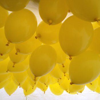 1500 ballonger redo för ballongsläpp !